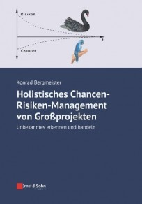 Holistisches Chancen-Risiken-Management von Großprojekten